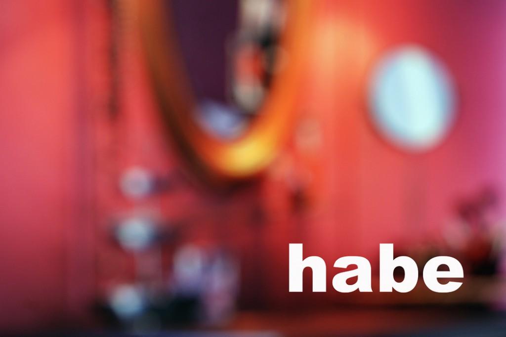 SEIN UND HABEN1_5